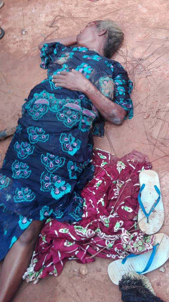 owl3 - Photos: Old Witch Turns Into A Bird In Lagos After Been Seriously Flogged With Brooms