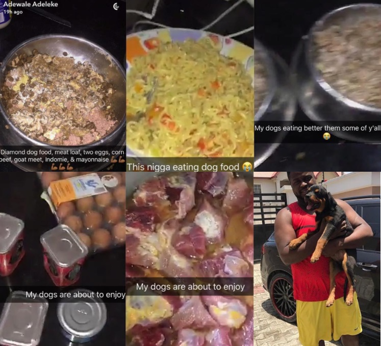 """My Dogs Eat Better Than Some Of You"" – Davido's Brother, Adewale"