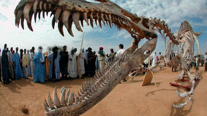 Remains Of Last African Dinosaur Discovered in Morocco