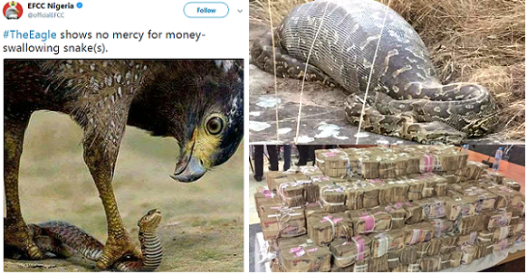snake swallow money